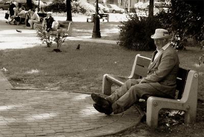 El hombre que daba de comer a las palomas...